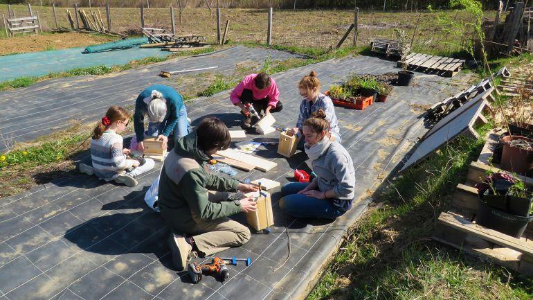 chantier participatif de fabrication de nichoirs à oiseaux