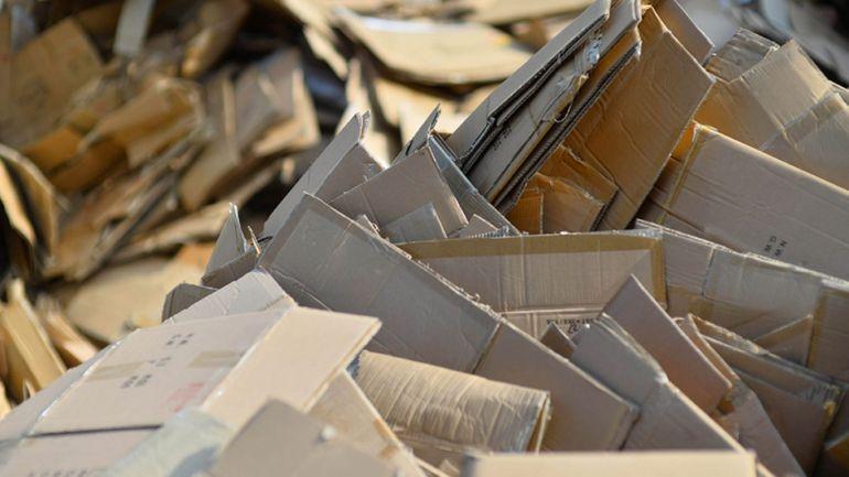 Collecte des cartons